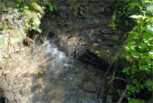 creek-01